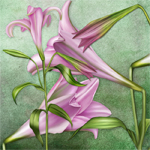 "Jaguarwoman's ""Watercolor Lilies"""